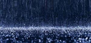 Rp_primary_rain
