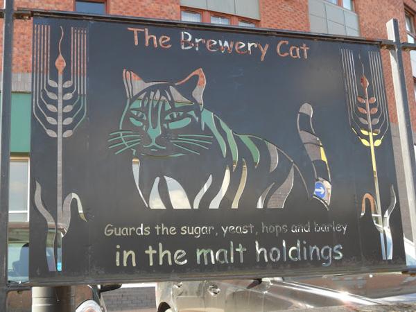 Brewerycat
